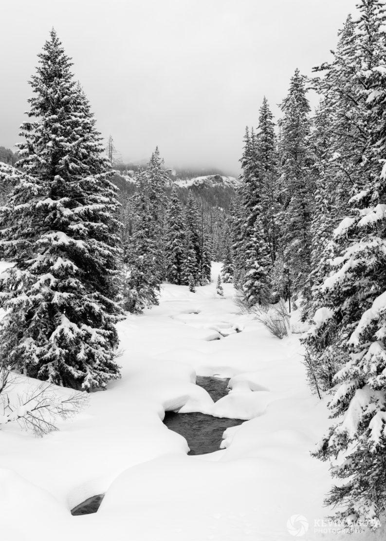 Soda Butte Creek in winter looking towards Barronette Peak