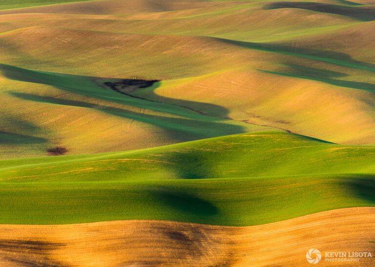 Fields of the Palouse from Steptoe Butte