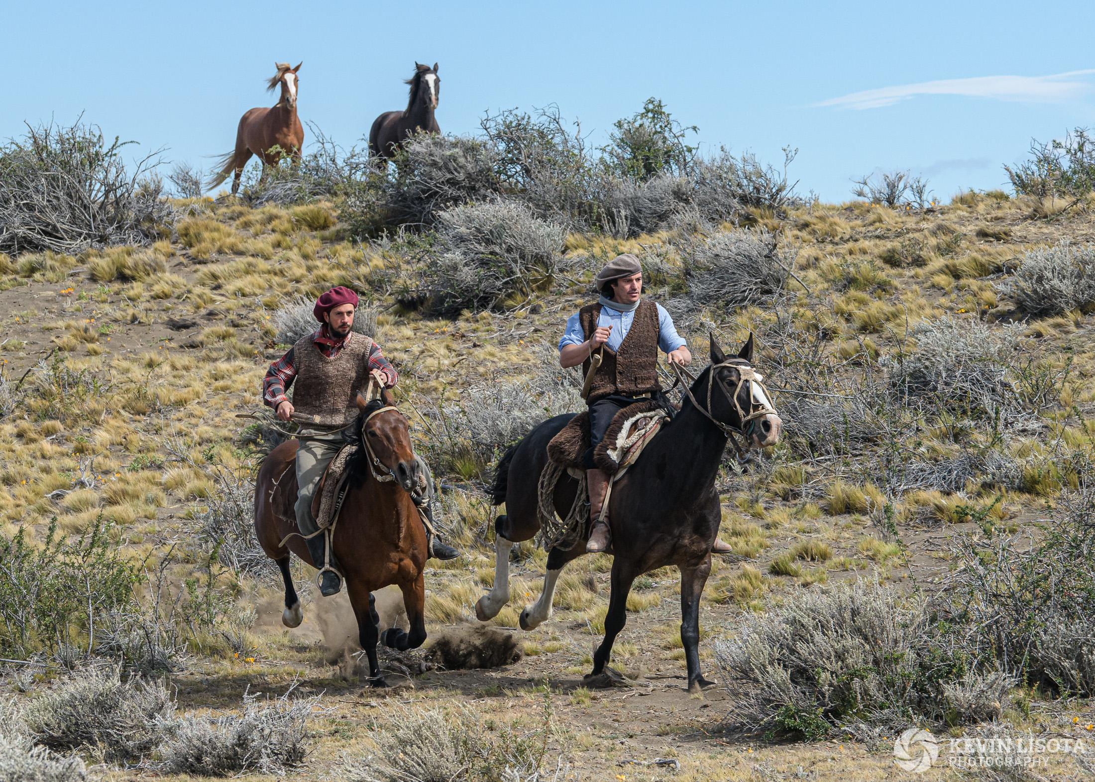 Gauchos gallop on horseback