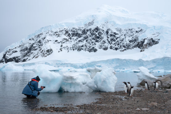 Photographing penguins in Antarctica