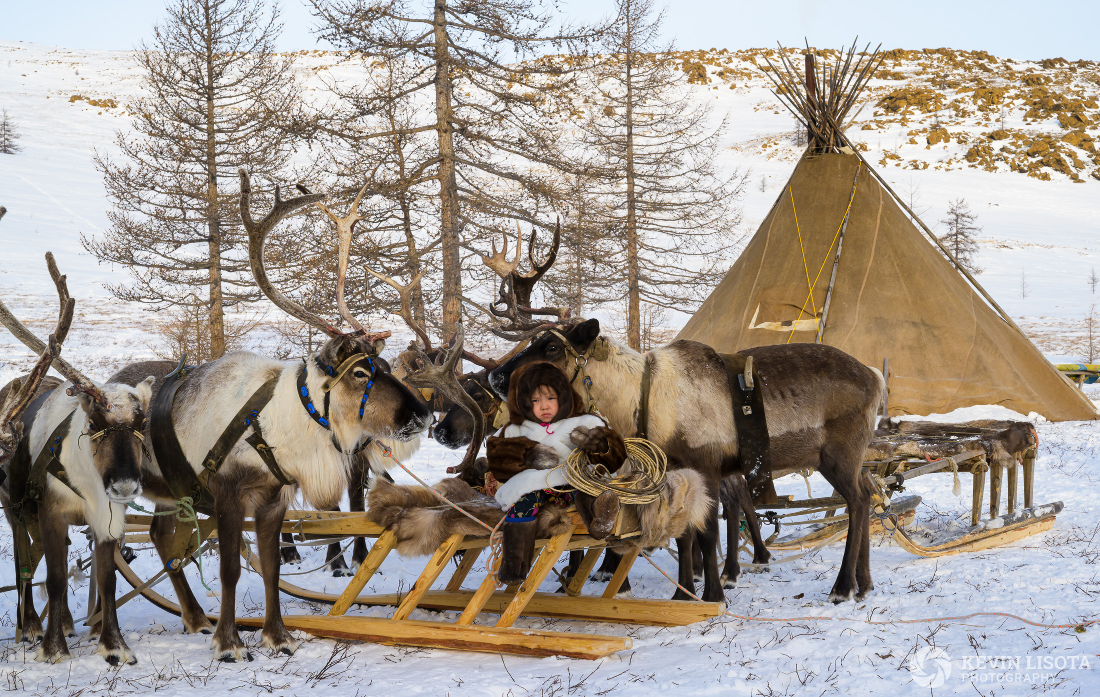 Nenets child with reindeer